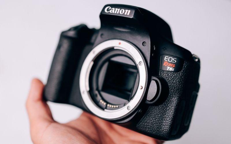 Canon EOS R 7 D